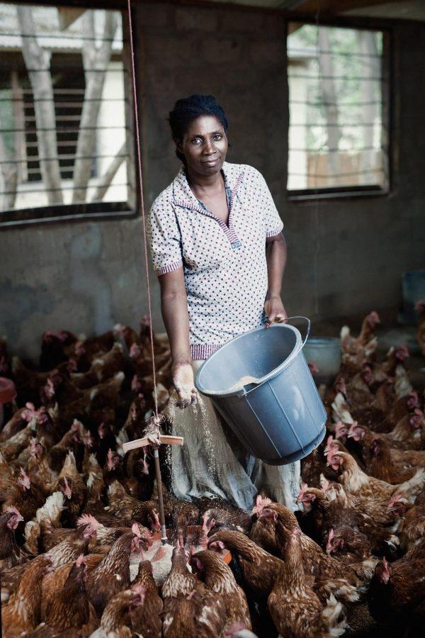 editorial-photography-portrait-malawi-chicken-farmer-namisu